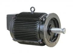 机车辅机电机 (4)