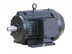 空压机专用电机 (1)