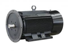 空压机专用电机 (2)