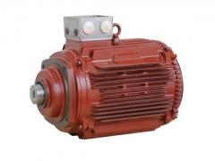 减速机专用电机 (1)