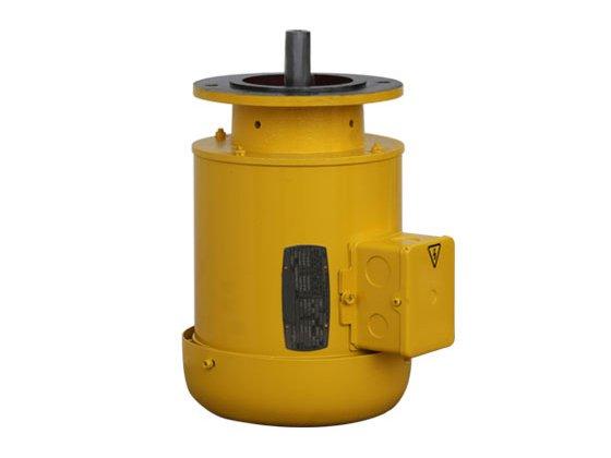 液压泵专用电机